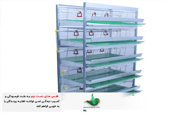 تامین نادرست تغذیه پرندگان در قفس دست دو