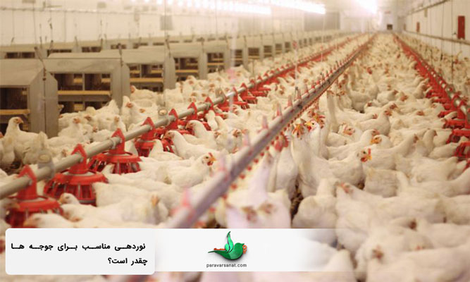 نوردهی سالن پرورش مرغ گوشتی